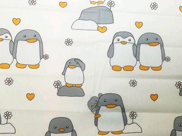 Grey penguin